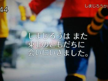 しまじろうのわお(2016年3月12日).jpg