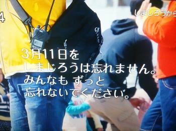 しまじろうのわお(2016年3月12日)その2.jpg