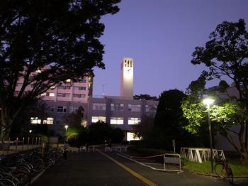 学芸大学構内の景色(2015年11月).jpg